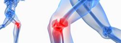 orthopedic-icon